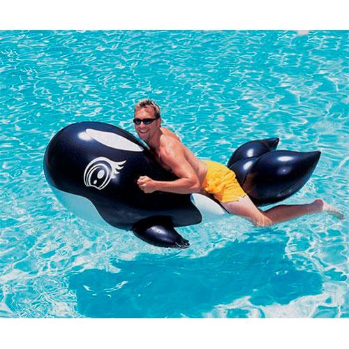 Boia Inflável Baleia Orca Grande - Nautika