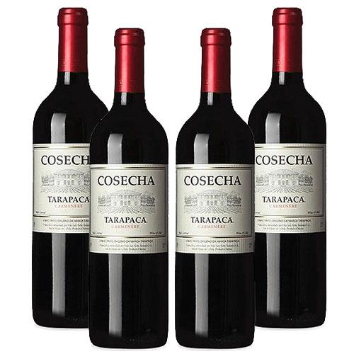 4 Vinhos Cosecha Tarapacá Carmenere 750ml